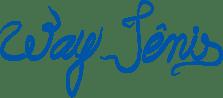 Logo Way Tenis